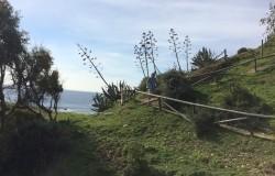 Tarifa - National Park walk