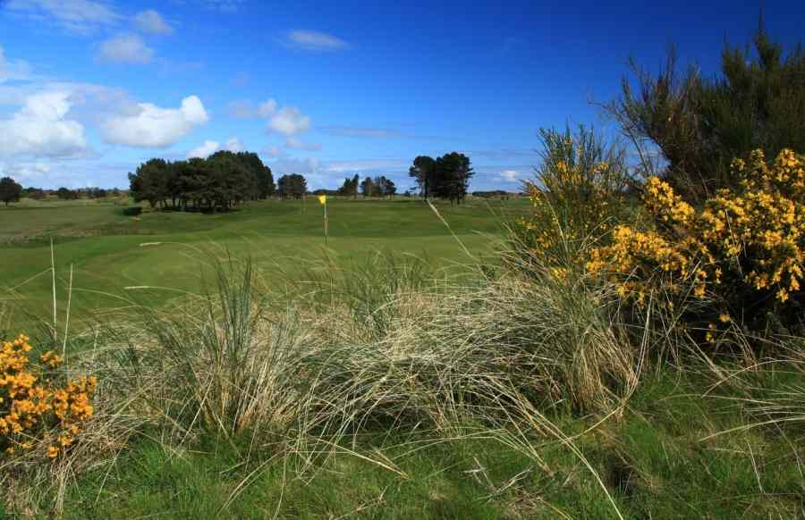 Monifieth 17th green from rear